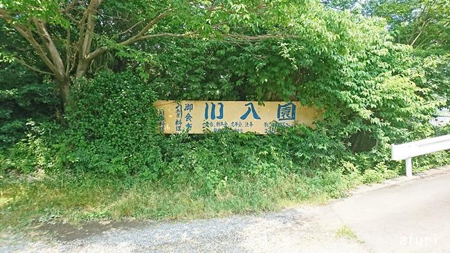 川入園場所